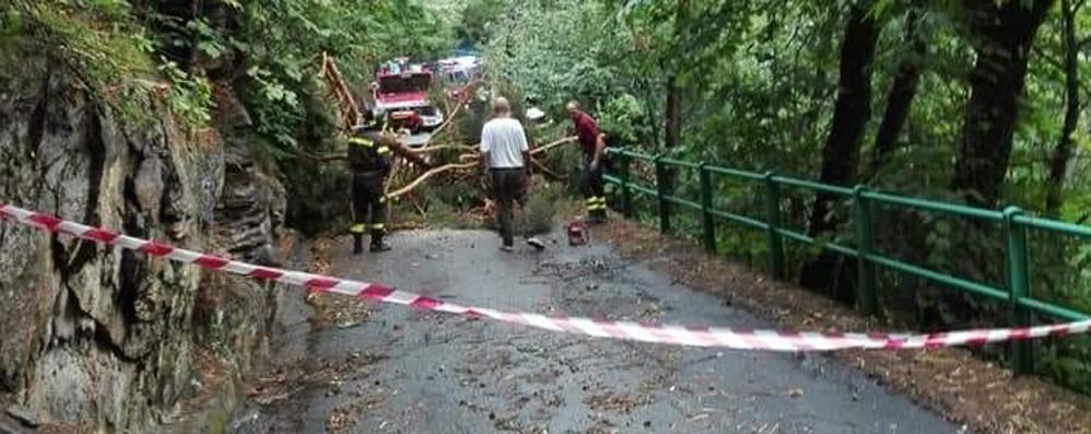 Maltempo a Grosio e Grosotto  Paura, danni e vigili all'opera