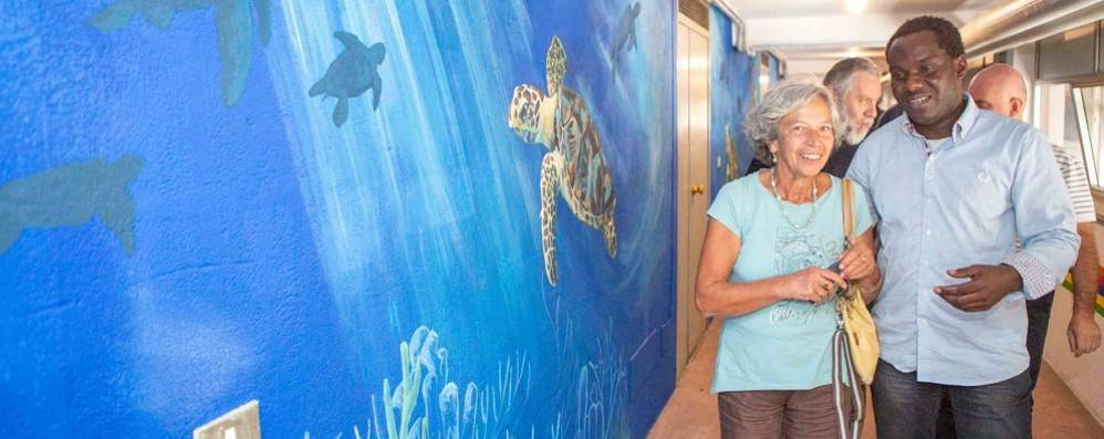Tartarughe colorate sui muri di AltraVia