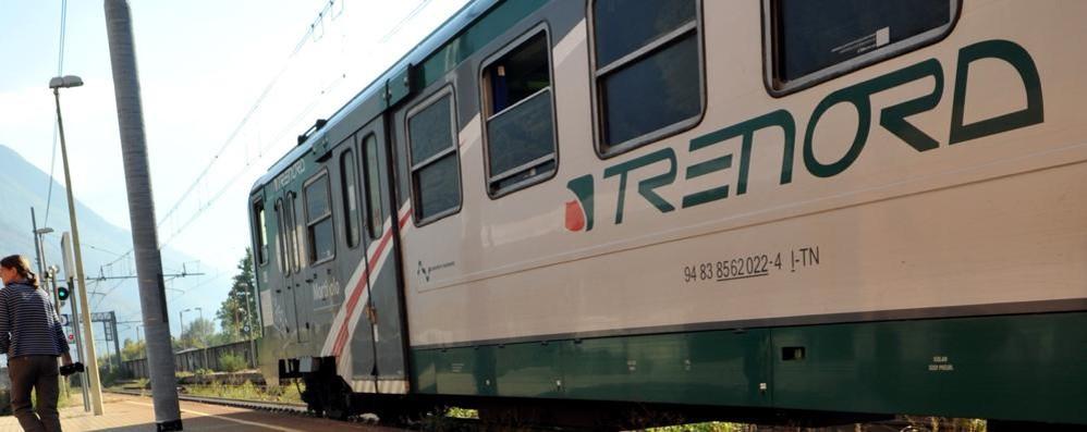 Cervo investito lungo la ferrovia: disagi per la soppressione di diversi treni