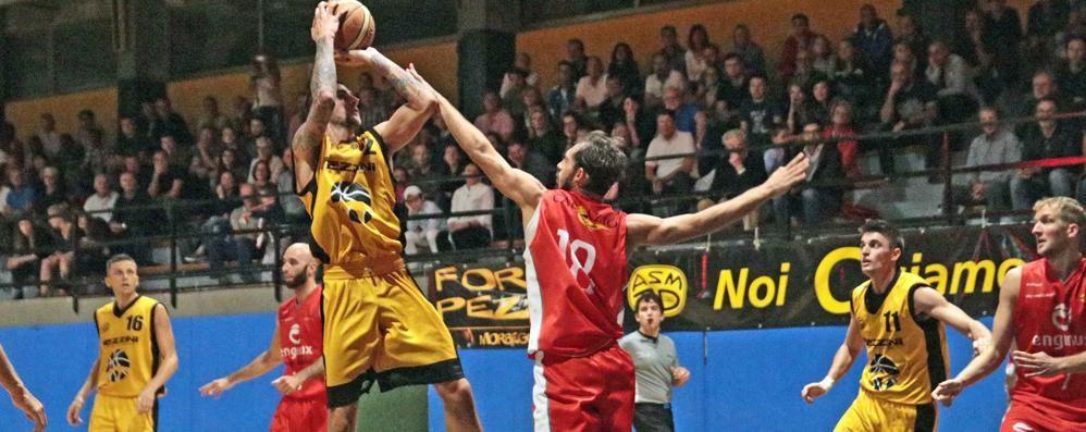 Basket serie C Silver, sesta sconfitta di fila per la Pezzini: coach Ronconi resta fiducioso