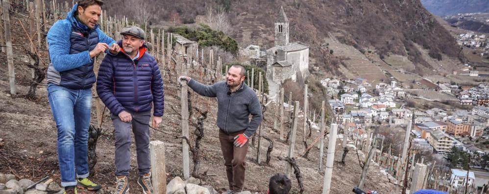"I terrazzamenti in tv. ""Linea Bianca"" a Tirano scopre i muretti a secco"