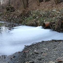 «Schiuma bianca nell'acqua»: allarme nel Bosco dei Bordighi