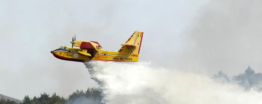 Incendio nei boschi di Albaredo, canadair all'opera