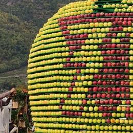 Mele e uva in vetrina: arrivano in migliaia  e la Sagra fa il pienone