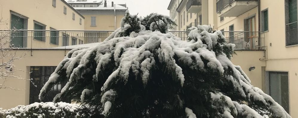 Maltempo: nevica anche in Valtellina   e Valchiavenna - Passi alpini transitabili, Anas e Polstrada consigliano prudenza
