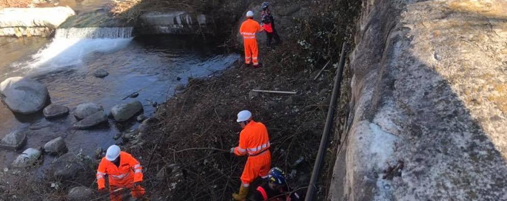 Tirano, 130 volontari per pulire il torrente  Il sindaco ringrazia