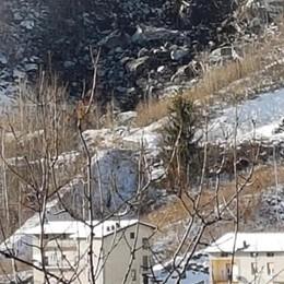 Torna l'incubo frana: 39 persone sfollate