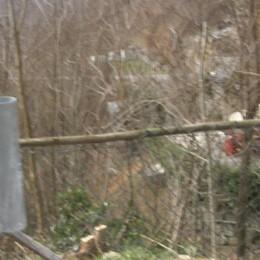 Antico sentiero sbarrato da una rete  «Non si cancellano millenni di storia»