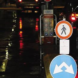 Parcheggi all'ospedale  «Le auto dei dipendenti   restano senza posto»