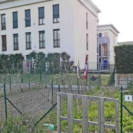 Orti urbani e terrazzi a Sondrio: in continua crescita la passione per la terra