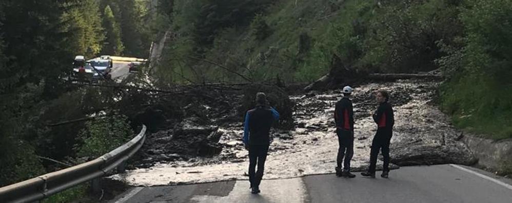 Il torrente tracima, colata di fango e alberi  sulla strada provinciale a Valfurva