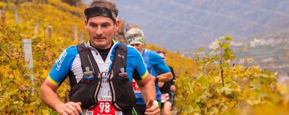 Corsa in montagna, presentata a Milano la Valtellina Wine trail
