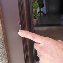Rieccoli in azione, ladri di appartamento  scatenati a Sondrio