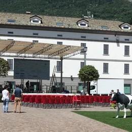 Olimpiadi, attesa a Sondrio con il maxi schermo in piazza