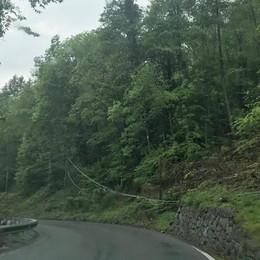 Pericoli sulla strada della Valmalenco: avviso ai proprietari