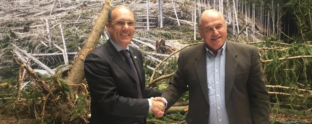 Boschi, accordo tra Ersaf e consorzi: «Punto di svolta»
