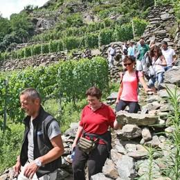Ciapél d'oro entra nel Festival delle Alpi  «Vetrina importante per il territorio»