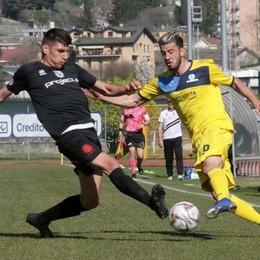 Calcio serie D, De Respinis pronto a guidare l'attacco del Sondrio