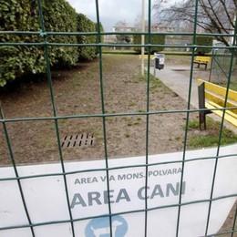 Chiavenna, un'area ad hoc per i cani  «Ma serve la collaborazione di tutti»