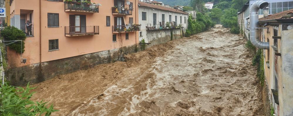 Dervio, task force  per il torrente Varrone  «Ora manutenzione e pulizia costanti»