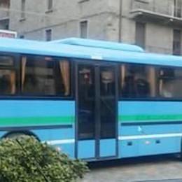 Il bus del ragazzo contagiato  «Nessuno me l'ha chiesto,  io l'ho disinfestato»