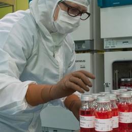 Virus, tre i casi in provincia    Lo  studente presto a casa
