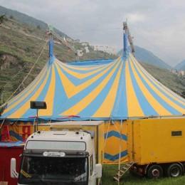 Protesta contro il circo  Il Comune si smarca  «Non lo si può vietare»
