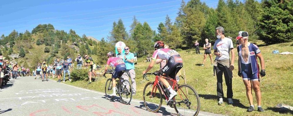 «Se saltasse lo Stelvio  Giro d'Italia sul Mortirolo»