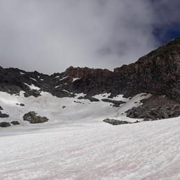 Scialpinismo, cade sul Suretta  Grave alpinista e soccorritore