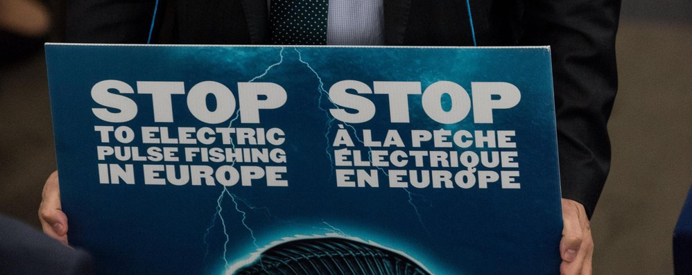 Corte Ue conferma stop a pesca elettrica