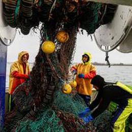 Commissione, Regno Unito sta violando accordi su pesca