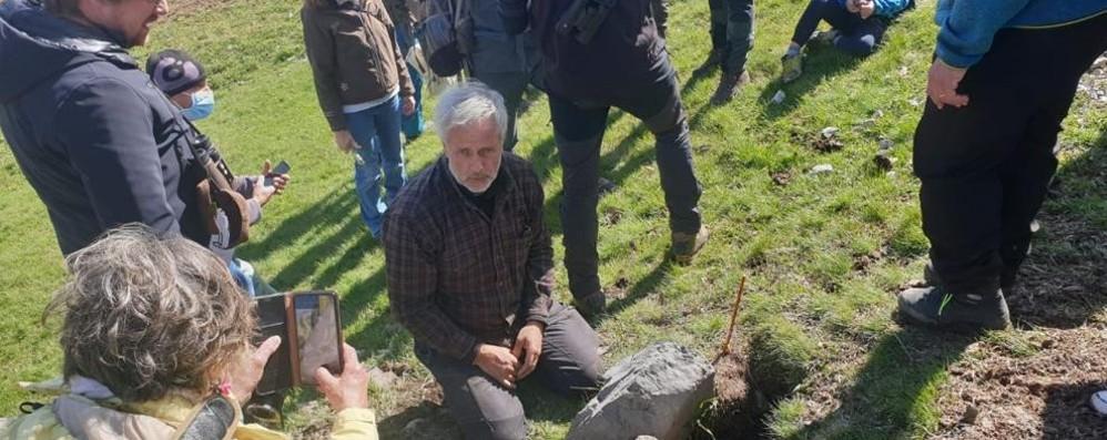 Troppe marmotte  Catture a Livigno  per salvare i prati