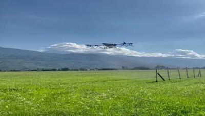 Caiolo, ecco il drone che lavora in vigna