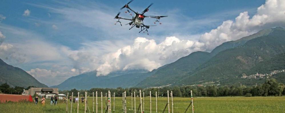 Il futuro dell'agricoltura  Si testa il drone  che lavora in vigna