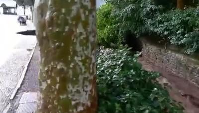 Cernobbio, la riva distrutta dal maltempo